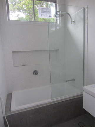 Replacing Shower and Bathroom